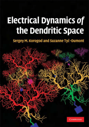 Electrical Dynamics of the Dendritic Space by Sergey M. Korogod and Suzanne Tyc Dumont