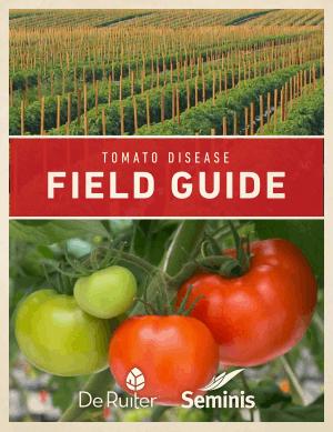 Tomato Disease Field Gude