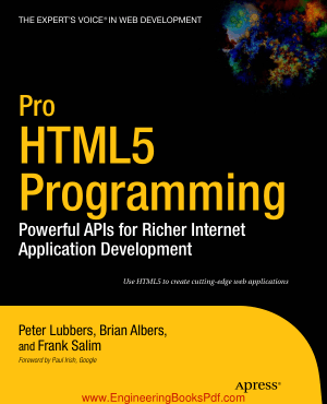Pro HTML5 Programming Powerful APIs for Richer Internet Application Development
